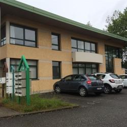 Location Bureau Saint-Genis-Pouilly 222 m²