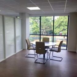 Location Bureau Saint-Ouen-l'Aumône 440 m²
