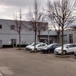 Location Local d'activités Lyon 7ème 307 m²