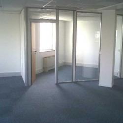 Location Bureau Issy-les-Moulineaux 530 m²