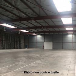 Location Entrepôt Mandelieu-la-Napoule 2400 m²