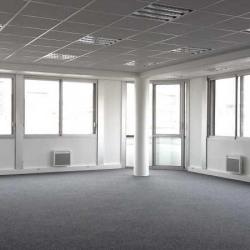 Location Bureau Le Vésinet 240 m²