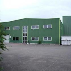 Location Local d'activités Achères (78260)