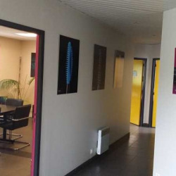 Location Local d'activités Draveil 1100 m²