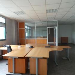 Location Local d'activités Bussy-Saint-Martin 432 m²
