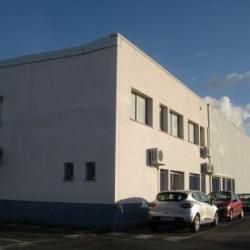Location Local d'activités Ingré (45140)