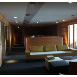 Location Bureau Lyon 7ème 861 m²