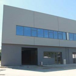 Location Local d'activités Bussy-Saint-Martin 2304,49 m²