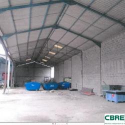 Vente Terrain Moulins 11464 m²