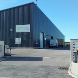 Location Local commercial Vailhauquès 260 m²