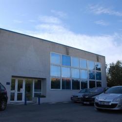 Location Local d'activités Pérols 78 m²