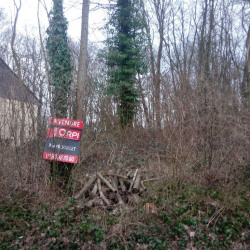 Vente Terrain Auneau 4538 m²