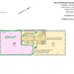 Location Bureau Lyon 2ème 233 m²
