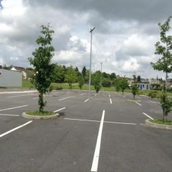 Location Local commercial Châtillon-sur-Indre 1264 m²