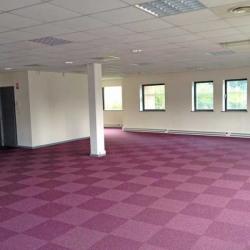 Location Bureau Wasquehal 423 m²