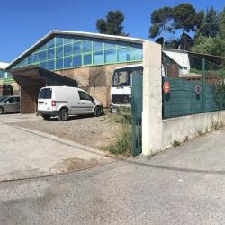 Location Entrepôt Carros (06510)
