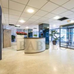 Location Bureau Paris 15ème 254 m²
