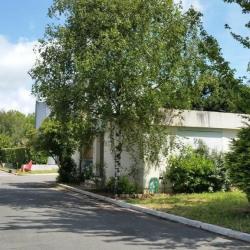 Vente Local d'activités Le Plessis-Robinson 705 m²