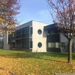 Location Bureau Schiltigheim 126 m²