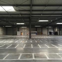 Vente Entrepôt Égly 4985 m²