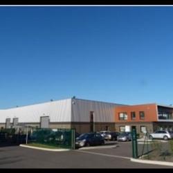 Vente Local d'activités Chaponnay 610 m²