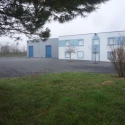 Vente Local d'activités Quincy-Voisins 1332 m²
