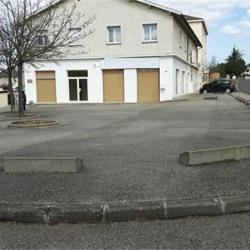 Location Bureau Chasse-sur-Rhône 190 m²