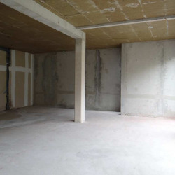 Vente Local commercial Montpellier (34170)