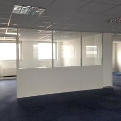 Location Bureau Lyon 3ème 222 m²