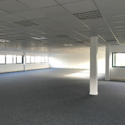 Location Local d'activités Gennevilliers 3449 m²