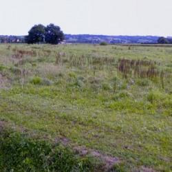 Terrain  de 704 m²  Uzein  (64230)