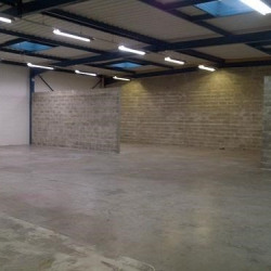 Location Local d'activités Tremblay-en-France 300 m²