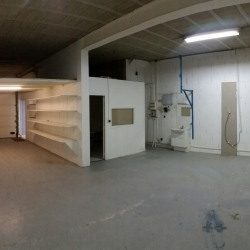 Location Local d'activités Crosne 150 m²