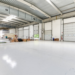 Vente Local d'activités Montigny-le-Bretonneux 6000 m²