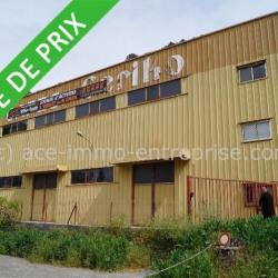 Vente Local d'activités Peillon 1950 m²