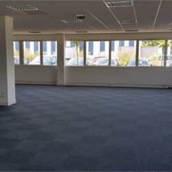 Location Bureau Saint-Quentin-Fallavier 230 m²