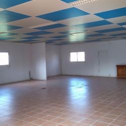 Location Entrepôt Fenouillet 450 m²