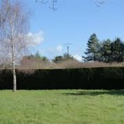 Terrain  de 425 m²  Châlons-en-Champagne  (51000)