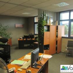 Vente Bureau Émerainville 306 m²