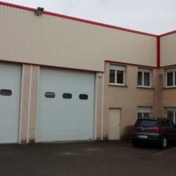 Location Local d'activités Chassieu 349 m²