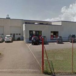 Location Local d'activités Sélestat 1080 m²