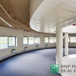 Location Local d'activités Roissy-en-France 4704 m²