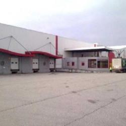 Location Entrepôt Satolas-et-Bonce 20684 m²