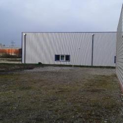 Vente Local d'activités Morestel 300 m²