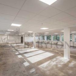 Location Bureau Issy-les-Moulineaux 1605 m²