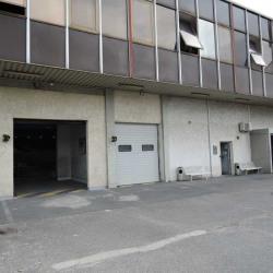 Location Local d'activités Fresnes (94260)