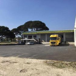 Location Entrepôt Blanquefort 1440 m²