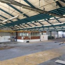 Location Local d'activités Nangis 2609 m²