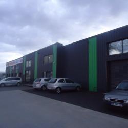 Location Local d'activités Saint-Jory 520 m²
