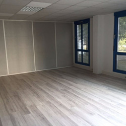 Vente Local commercial Francheville 655 m²
